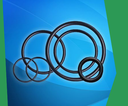 Importer of perfluoroelastomer ffkm o rings in Europe, UK – Horiaki